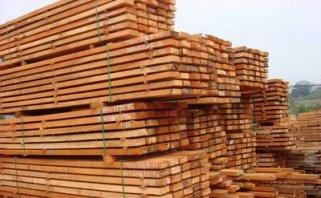 В Сахалинской области появятся пять современных деревообрабатывающих станков